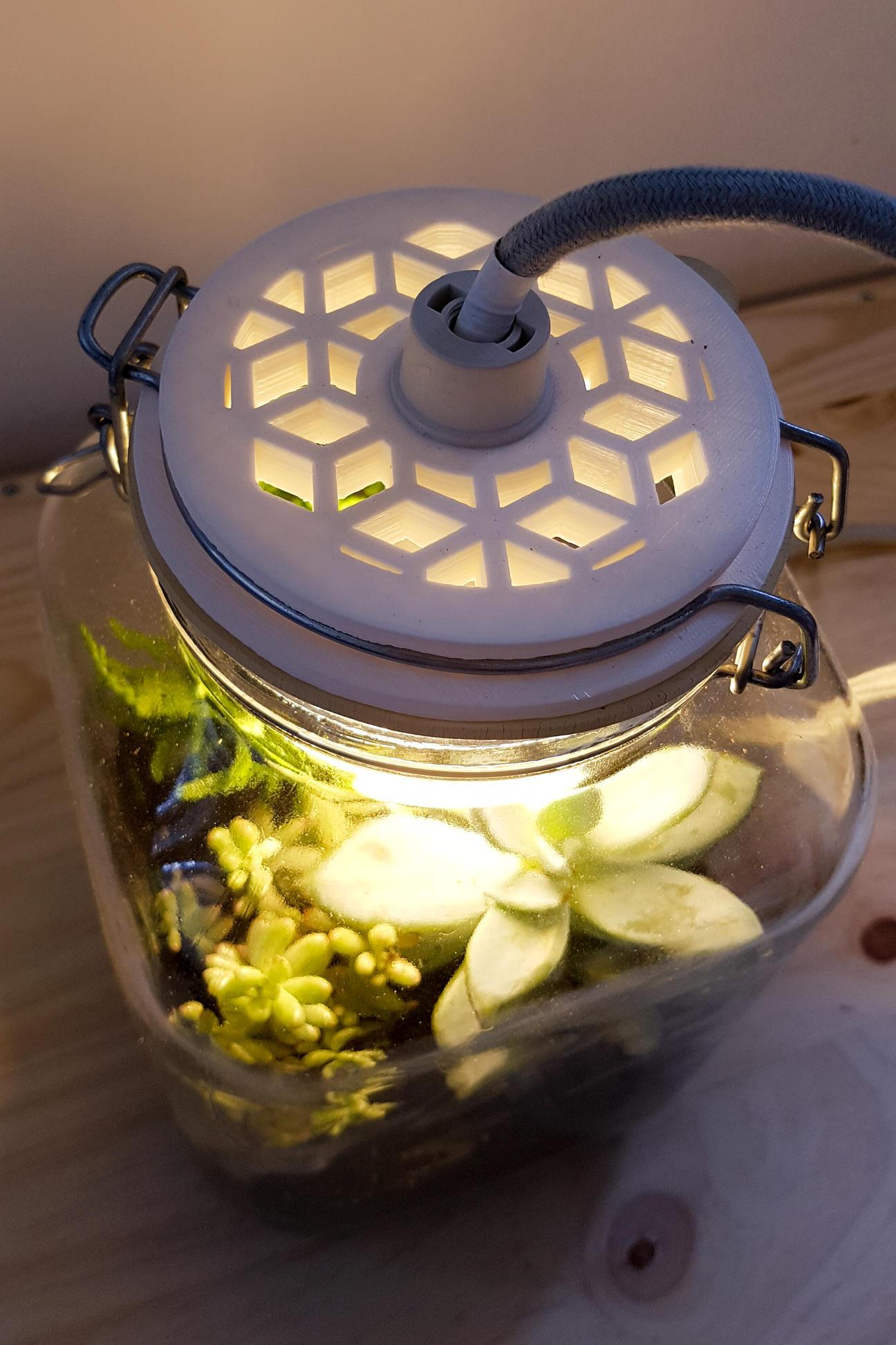 Design de lampes terrariums combinant upcycling, impression 3D et bocaux en verre vintage