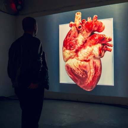A Living Heart